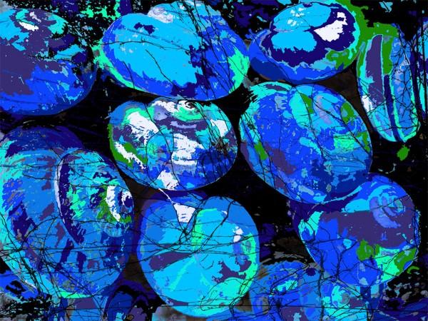 mavi salyangozlar